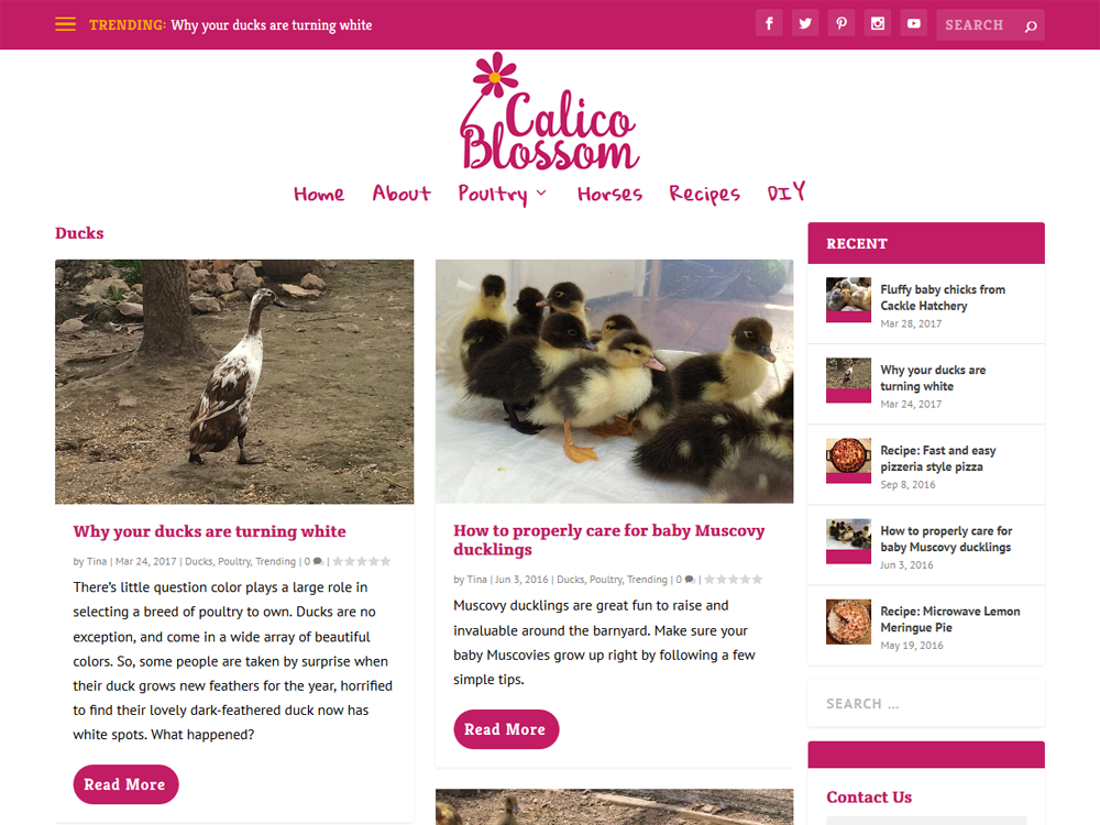 Calico Blossom - Farm Lifestyle Blog