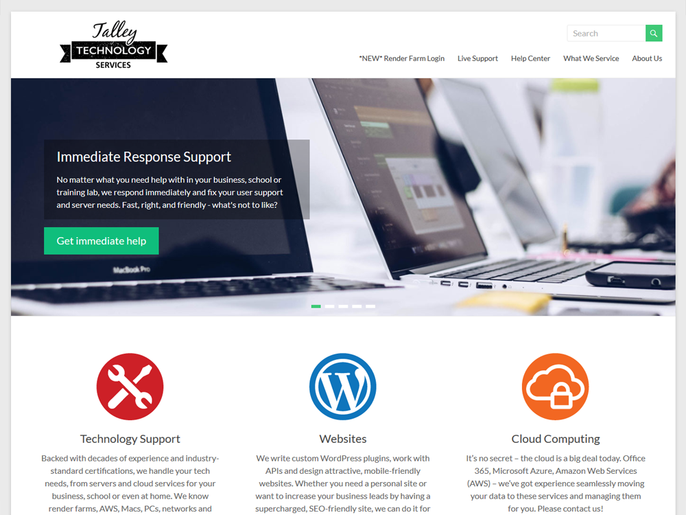 Talley Technology Services - Professional IT Support Website